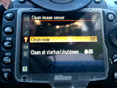 Nikon D90 Cleaning Menu